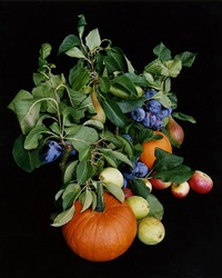 from the series flowers, fruits & portraits: [stilleben-17-2007] by shirana shahbazi